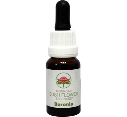 Australian Bush Boronia (15ml)